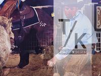 T/K Cutting Horses