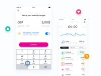 Per category budgeting — Revolut Retail