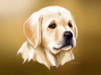 Puppy Love- Digital Painting artist puppy designer painting drawing illustration dog art digitalpainting