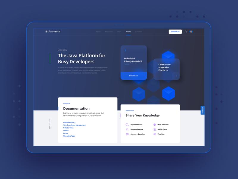Liferay Dev Site digital software developer typography liferay simple clean brand interface blue modular branding web design web modern ui design ux