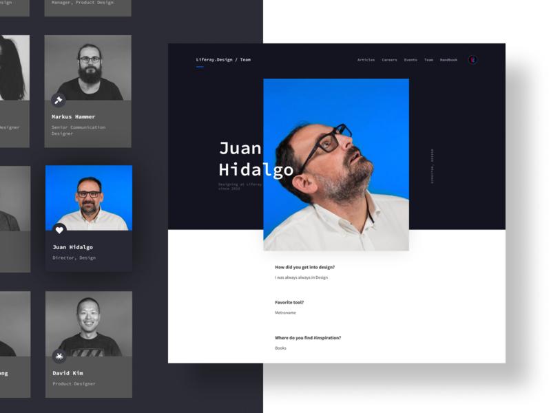 Liferay Design Site community brand white clean simple designer black blue interface branding modular web design web ui modern design ux