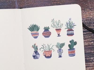 Plants & Pots fern cactus leaves garden plants