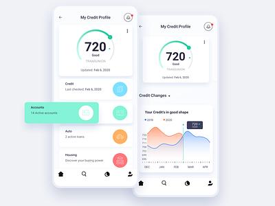 My Credit ux credit finance app analytics illustration dashboard iphone ios design ui