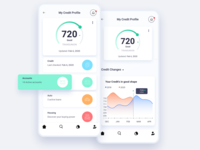 My Credit ux credit finance app analytics illustration dashboard iphone ios design ui