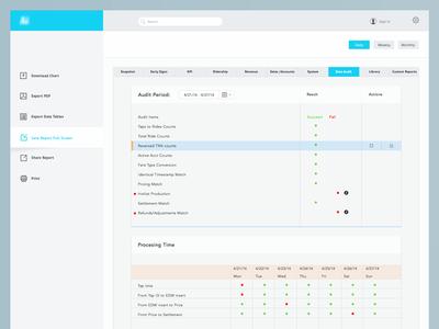 Dashboard Data Audit