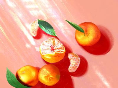 Mandarin sunlight shine bright leaf illustration highlights shadows lighting chinese orange fruit mandarin