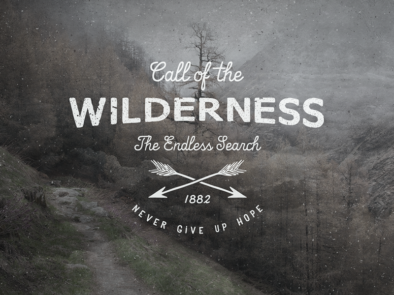 Call of the Wilderness hand lettering lettering typography sketch pencil ink drawing quote texture calligraphy letters hand drawn