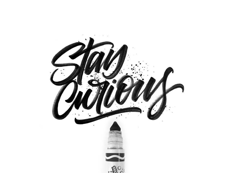 Stay Curious letters pen adobe marker crayola type typography calligraphy lettering hand-lettering