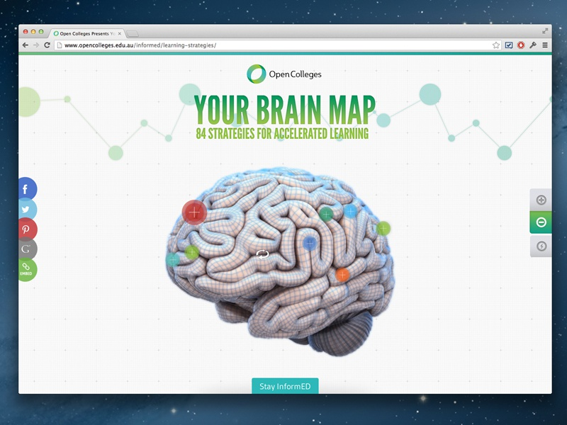 Green Chameleon Projects Interactive Brain Dribbble