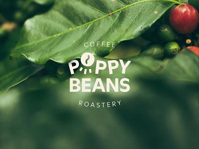 Poppy Beans Coffee Roastery logo typography brand natural mark graphic design clean roastery coffee logotype logo identity branding