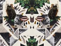 Ayahuasca cat mixed media collage
