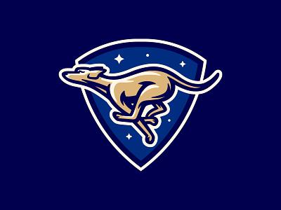 Greyhound mascot sport logo stars night greyhound dog