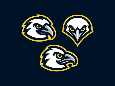 Eagles sport mascot logo hawk falcon bird