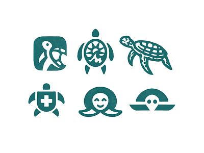Sea Turtle exploration sketch logo sea turtle turtle