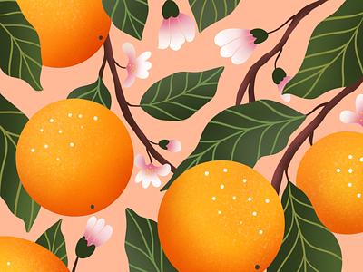 Sweet Oranges design branding pattern background oranges flower illustration plant illustration procreate illustration