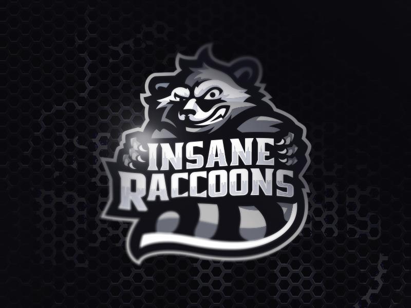 Insane Raccoons...