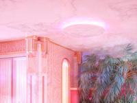 Pinkroom 2050