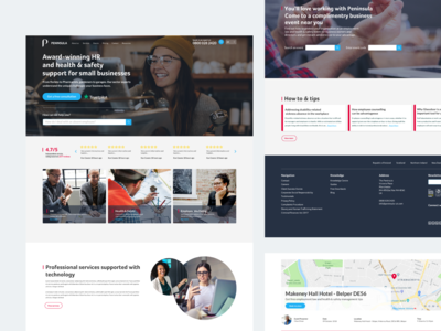 Employment Law Firm Website Concept