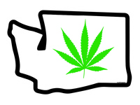 Washington Weed