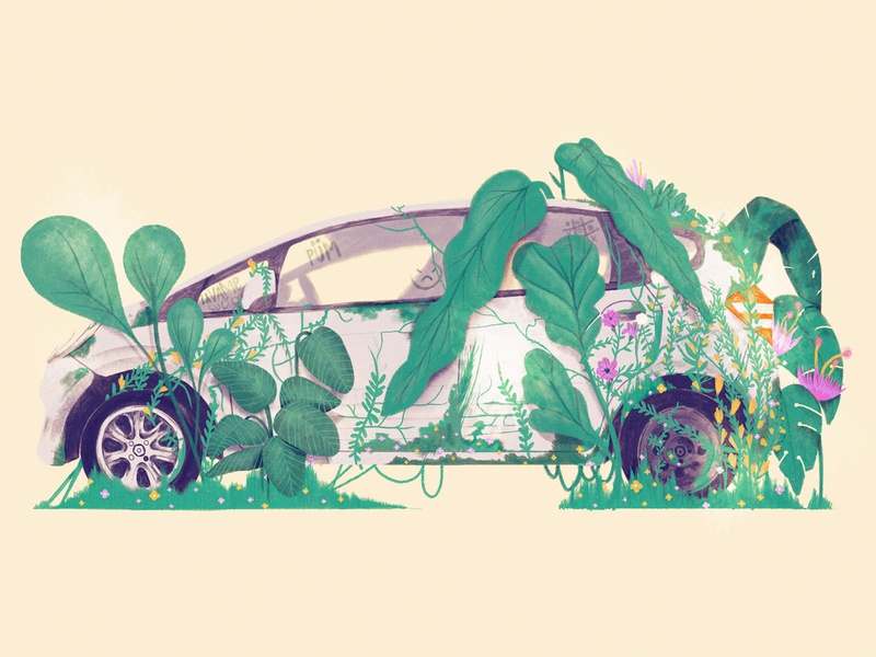 Honda Fit invasion plant botanical honda brazil illustration