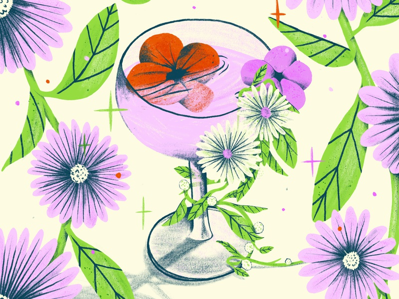 The Drink procreate illustration botanical illustrator