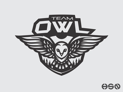 Team OWL streamers twitch strong overwatch gamers sports game team logo logodesign cool mascot vector sportslogo gaming gaming logo logo illustration branding bold esports