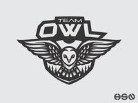 Team OWL