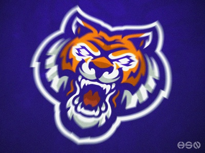 Angry Tiger avatar icon identity sports animal logo animal illustration animal art tiger logo team logo logodesign vector mascot ui sportslogo gaming logo illustration bold branding esports