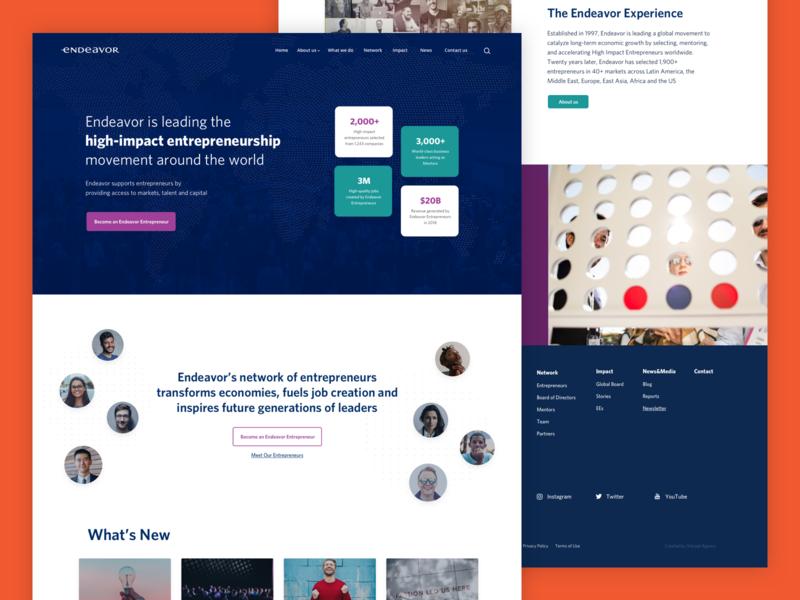 Endeavor enterpreneur marketing startups responsive design ux healthcare fmcg energy tecnology retail vector design website ui webdesign