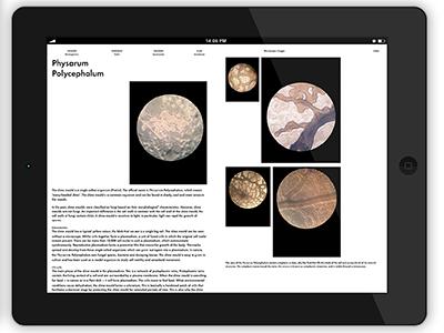 Form Follows Organism e-book epub publishing publication hybrid design graphic book ebook e-book