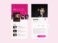 adoption dog app