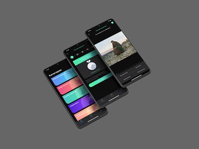 Art Quiz web development mobile app interaction ui development mobile android interface design application