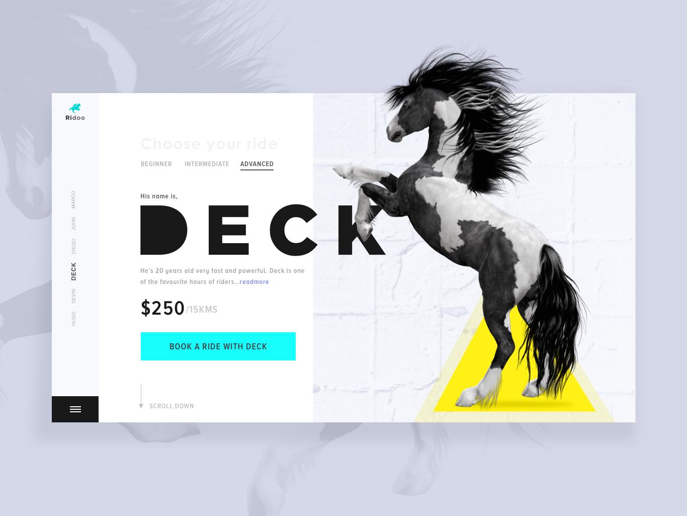 Landing Page - Horse Riding web photography ux ui  ux design typography ui colors design