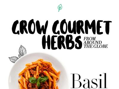 AllThatGrows Emailer white leaf illustration green seeds black font typography ecommerce design