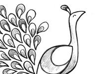 Peacock Illustration Sketch