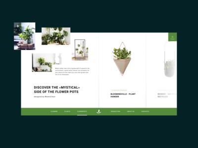 E-commerse concept - Plants and pots