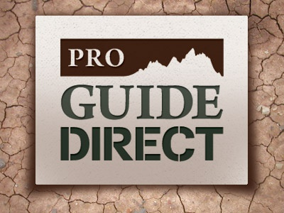 Pro Guide Direct Logo logo design brand outdoors work