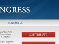Teaser for a Congressional Candidate's Site