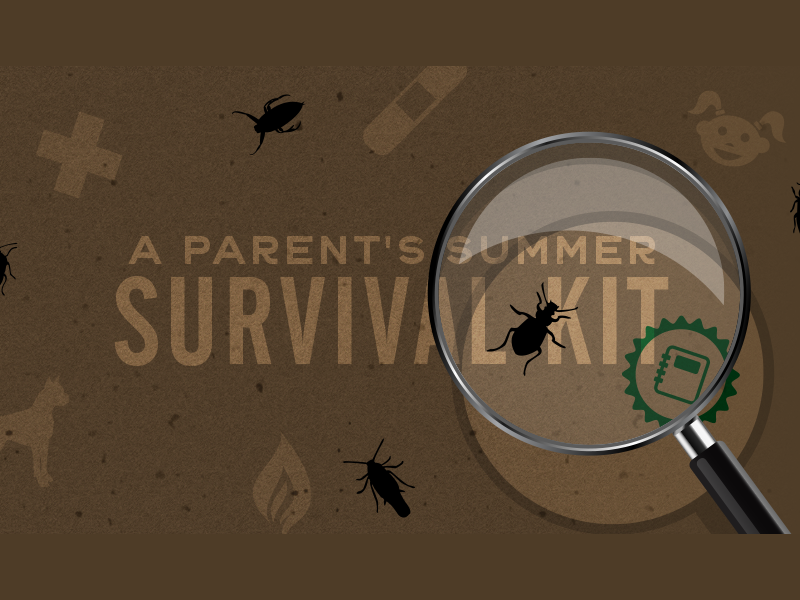 Summer Survival Kit bandaid magnifying glass survival parents kid bugs social pittsburgh actual size summer