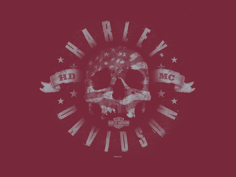 Harley-Davidson Skull florida orlando nickhammonddesign.com nhammonddesign nick hammond design nick hammond tshirt apparel design apparel hdmc american flag skull skull harley davidson harley-davidson