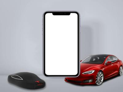 Tesla Service app