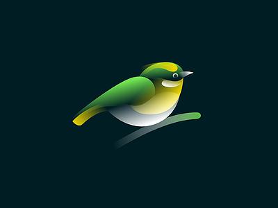 Silvereye identity gradient symbol mark logo sparrow nature silvereye bird finch