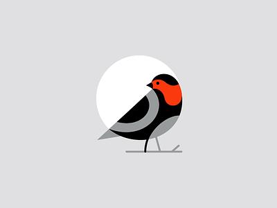 Bird orange black passerine finch bird nature sparrow logo mark symbol identity