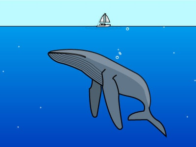whale nature whale illustration vector