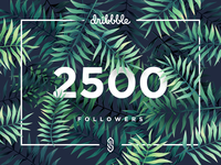 2500 dribbble Followers!