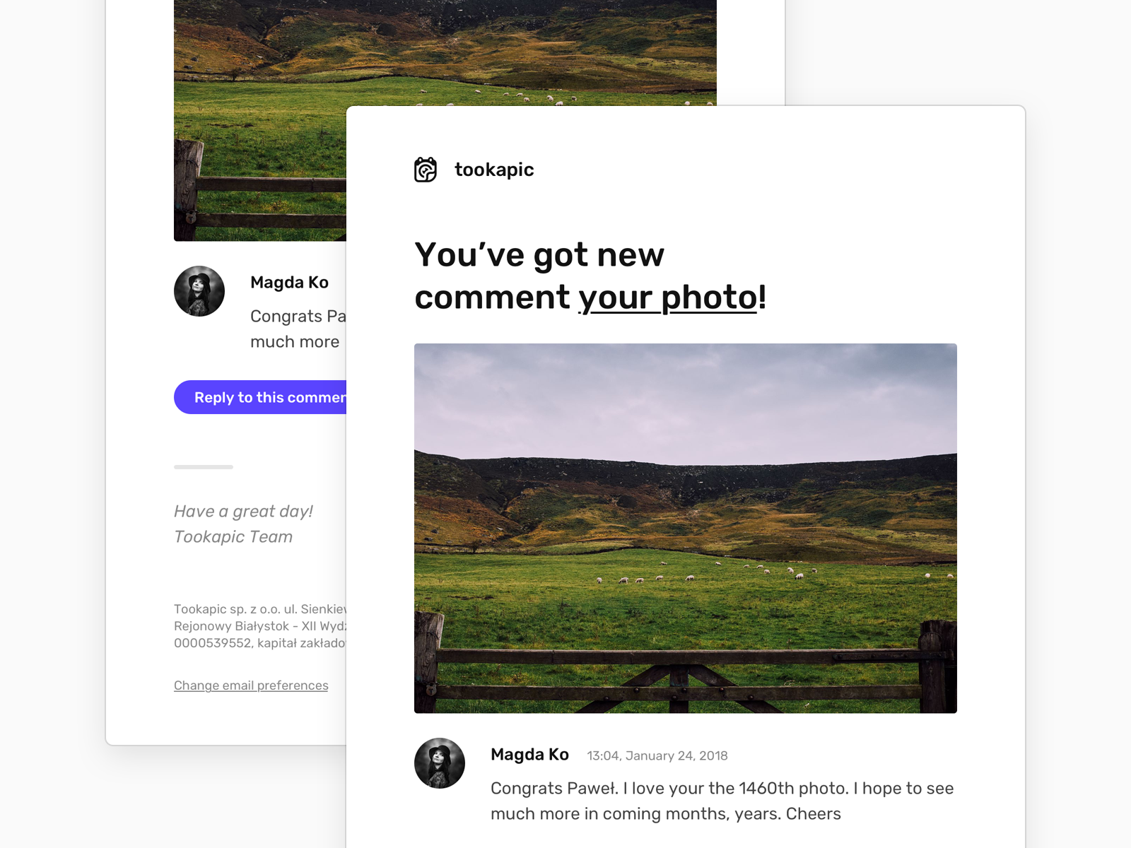 New Comment Notification web design webdesign design ui clean minimal web typography message newsletter email notification