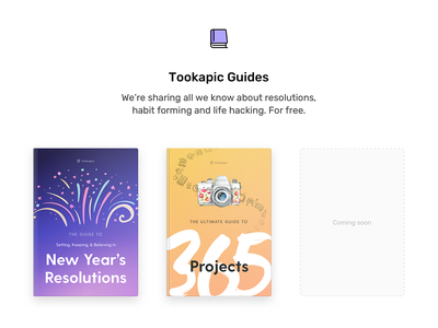 Tookapic Guides webdesign minimal clean web landing page landing freebie free cover ebook book guide