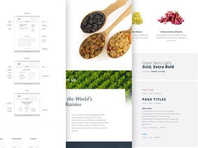 A new process responsive simple clean raisins grid prototyping wireframes guide functionality fonts buttons hundred10