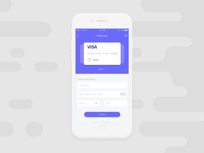 Credit Card Check Out UI #002 002 dailyui