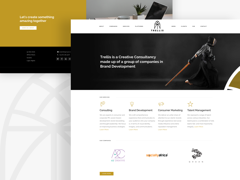 Trellis Group clean ux web design website ui creative consultancy